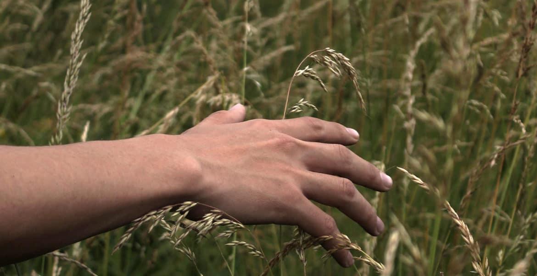 hands free orgasm o-boy o-diaries
