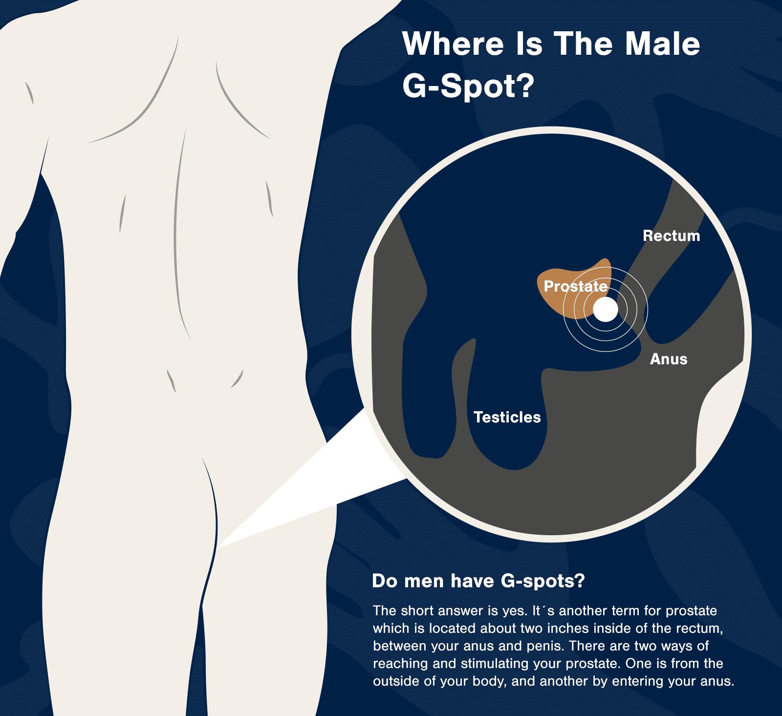 do men have g-spots o-boy-o-diaries