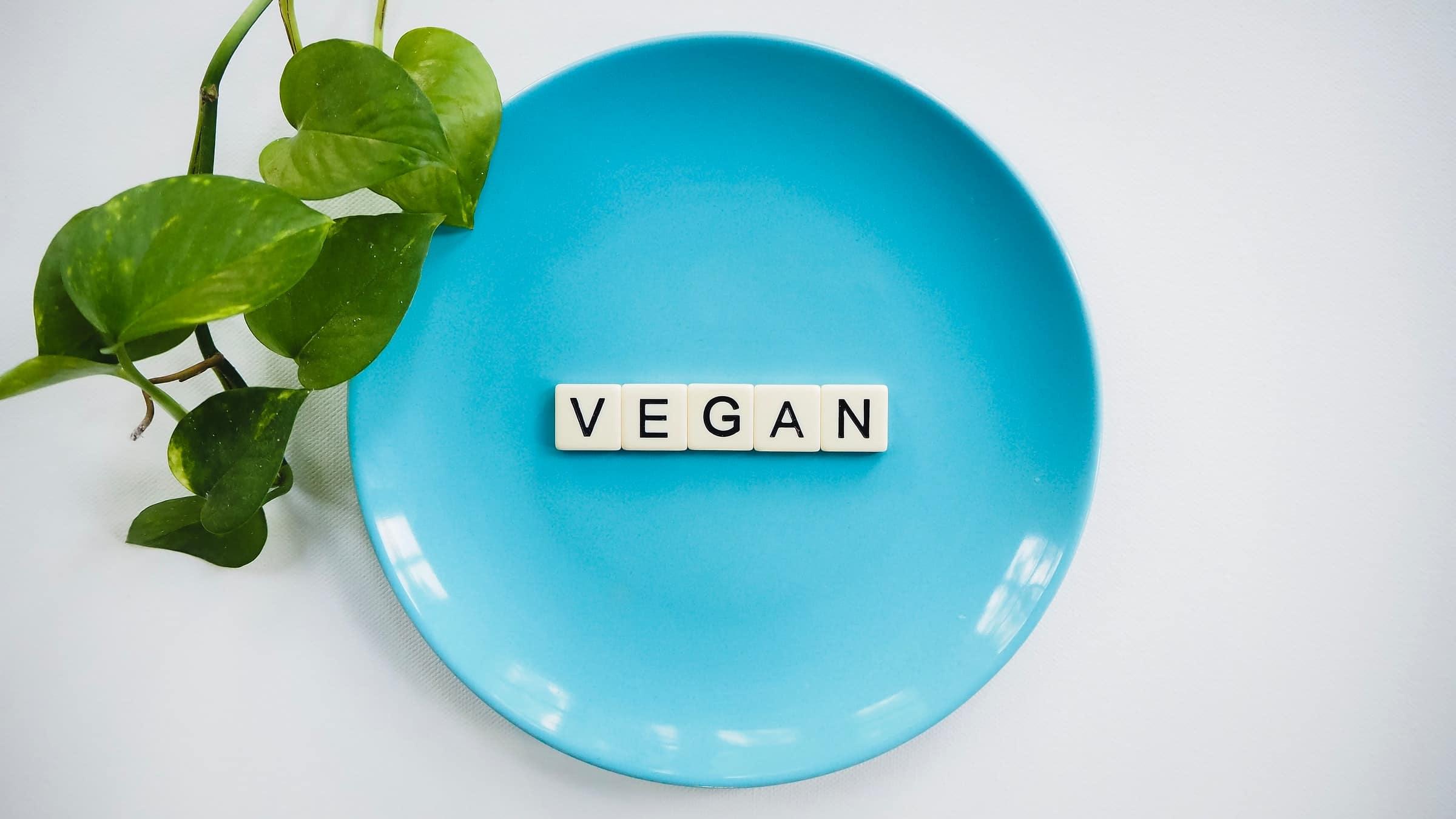 vergan plate hero image